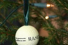 thumbs_golfball_detail-gr%c3%bcn
